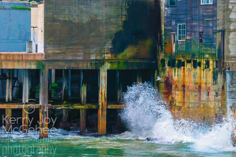 Cannery Splash