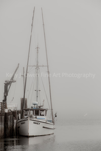 Docked. Bodego Bay, California (2013 Kelly J. Owen)