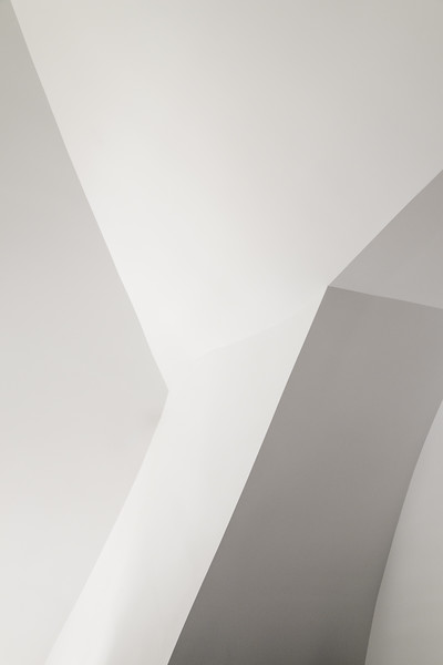 Lines of Gehry #21
