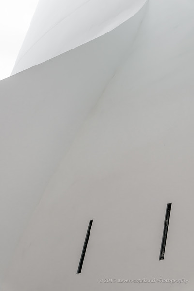 Lines of Gehry #17