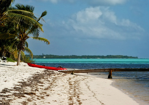Red Kyack, Little Cayman