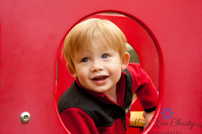 Peeking through some playground equipment.