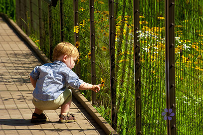 Has to be boy after his Mimi's heart- checking out flowers.