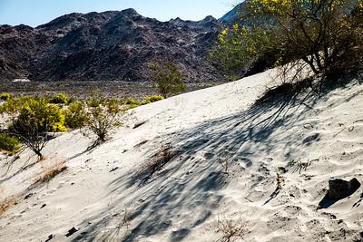 Desertscape 3