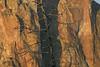 welded rhyolite juniper