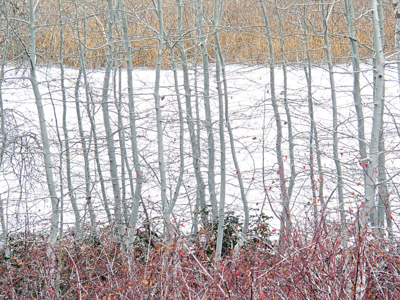 klamath ice