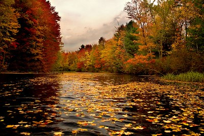 Fall in the Monadnock Region