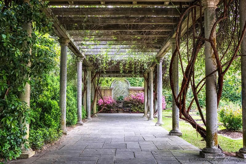 pergola at Birmingham botanical gardens