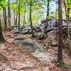 Moss Rock #1