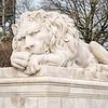 lion mascot #2
