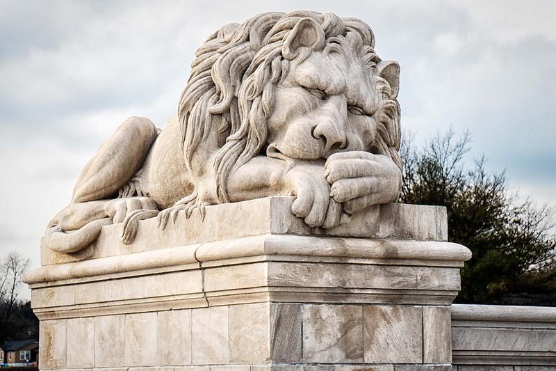 Lion Mascot #1