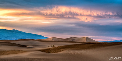 Mesquite Flat Sand Dunes Sunset II