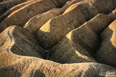 Zabriskie Point Detail III