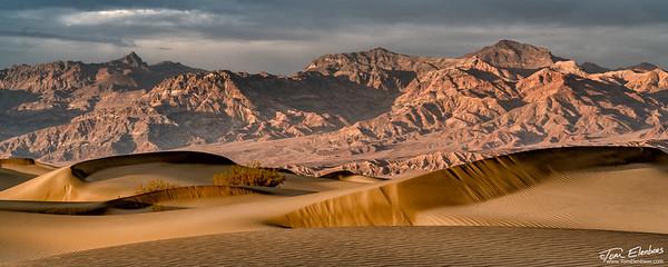 Mesquite Flat Sand Dunes IV