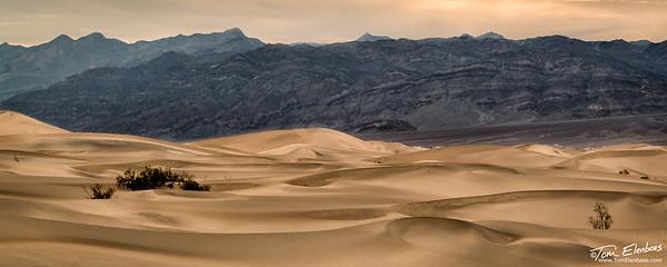 Mesquite Flat Sand Dunes I