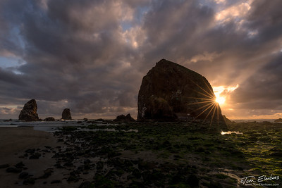 Haystack Rock I, Cannon Beach