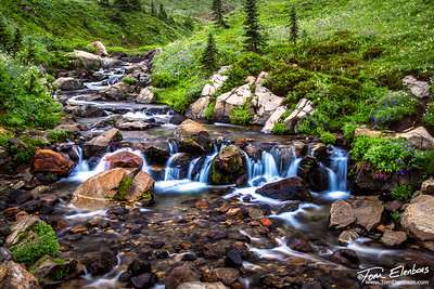 Edith Creek, Mt. Rainier N.P.