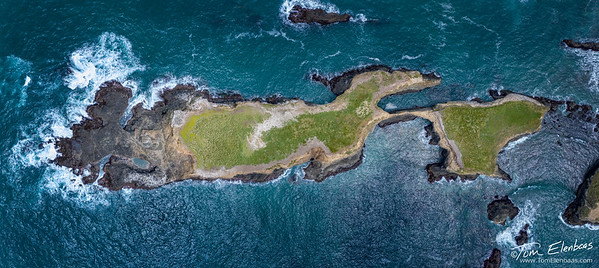 Aerial View of the Mendocino Headlands