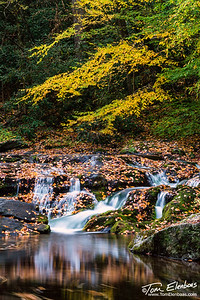 Little River Road, Great Smoky Mountains N.P.