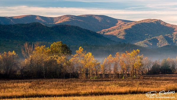 Cade's Cove, Great Smoky Mountains N.P.