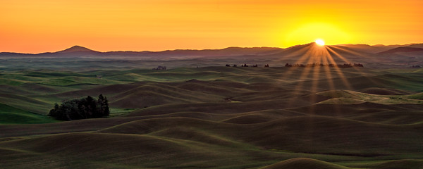 Steptoe Butte Sunrise I