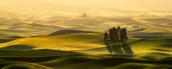Steptoe Butte Sunrise III