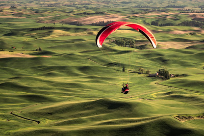 Soaring Over the Palouse II