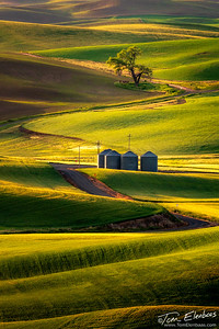 Steptoe Butte Sunrise II