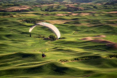 Soaring Over the Palouse I