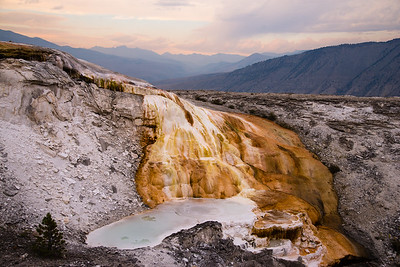Lower Terraces, Mammoth Hot Springs