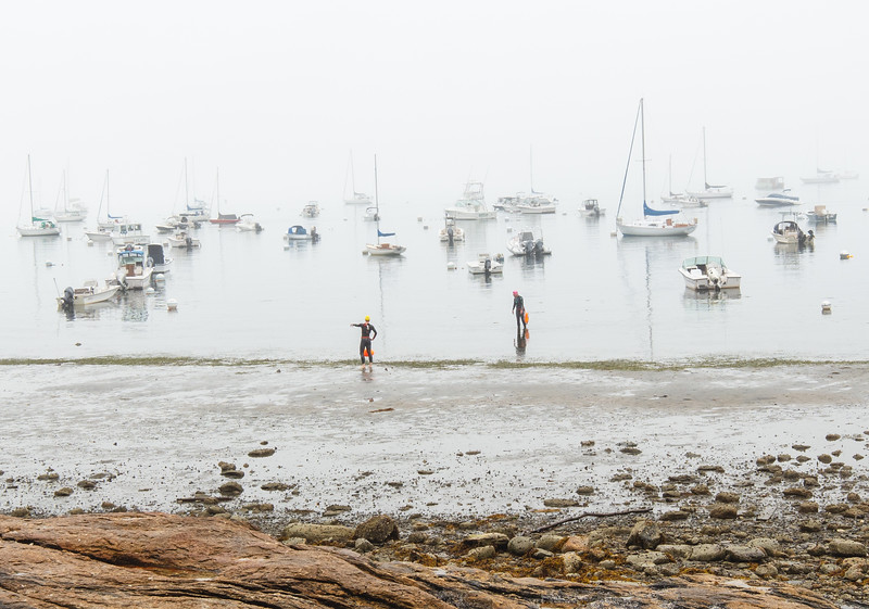 Distance Swimmers in the Fog