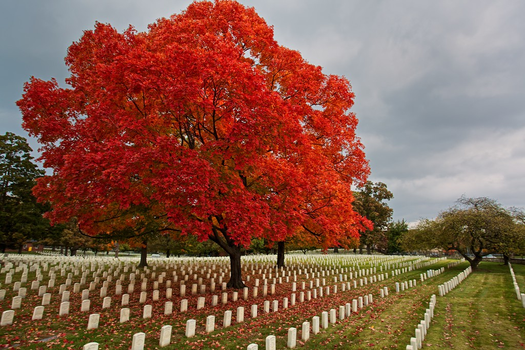 U.S. Military National Cemetery