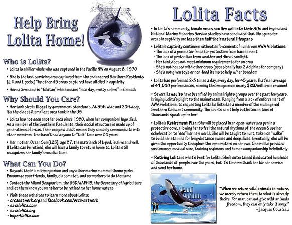 LolitaFlyer-Complete