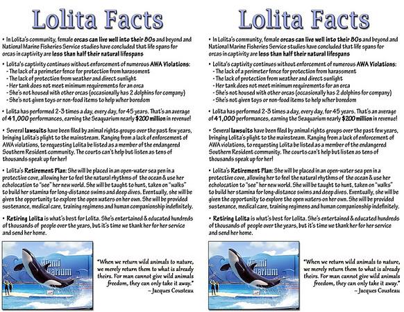 LolitaFlyer-Facts-Double