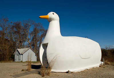 Tourist attraction and office for tourist information. Long Island was a big producer of farm raised ducks. Flanders, Long Island.