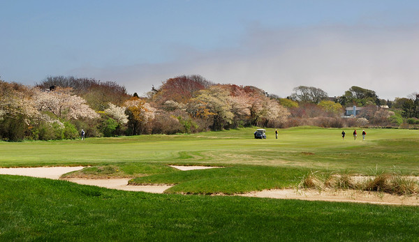 Hamptons Golf Course in Spring