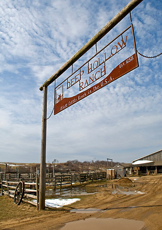 "Deep Hollow Ranch in Montauk, Long Island, NY<br /> The ""Oldest Cattle Ranch in the USA""!"