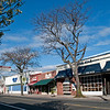 Sayville Main Street, winter trees