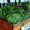 Farm Stand, Open<br /> Local produce on the north fork of Long Island