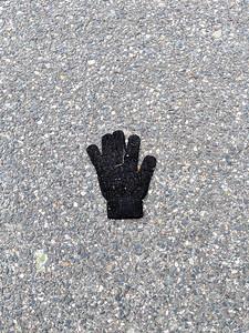 Black Fuzzy Glove