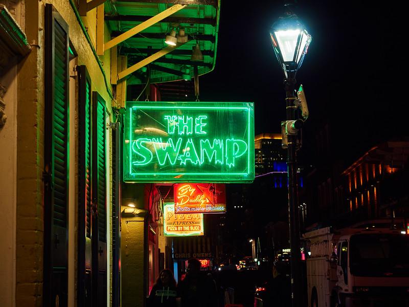 Neon, The Swamp - New Orleans, Louisiana