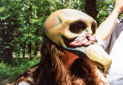 King Vulture Mask