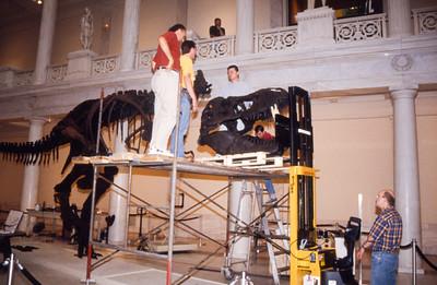Installing a T-rex