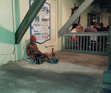 Key West transient...keeping on eye on his wooden Pelican down at the Marina 4/23/14