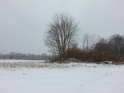 Lonesome view from across an open farm field...1/6/2015