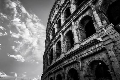 The Bird & The Coliseum