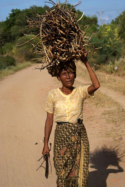 Archeological site of Bagan - Myanmar | Burma - lady carrying wood.