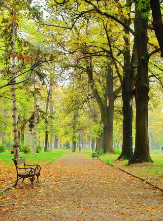 Fall in city park, Skopje