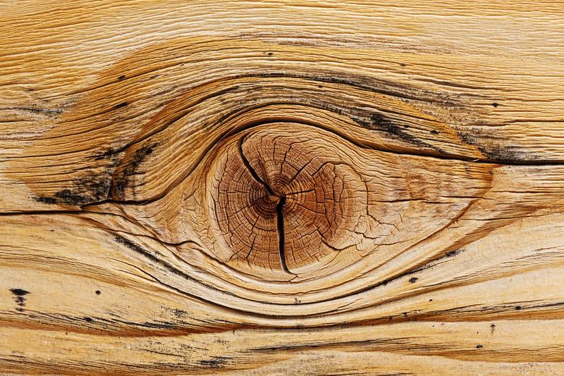 Wood Eye