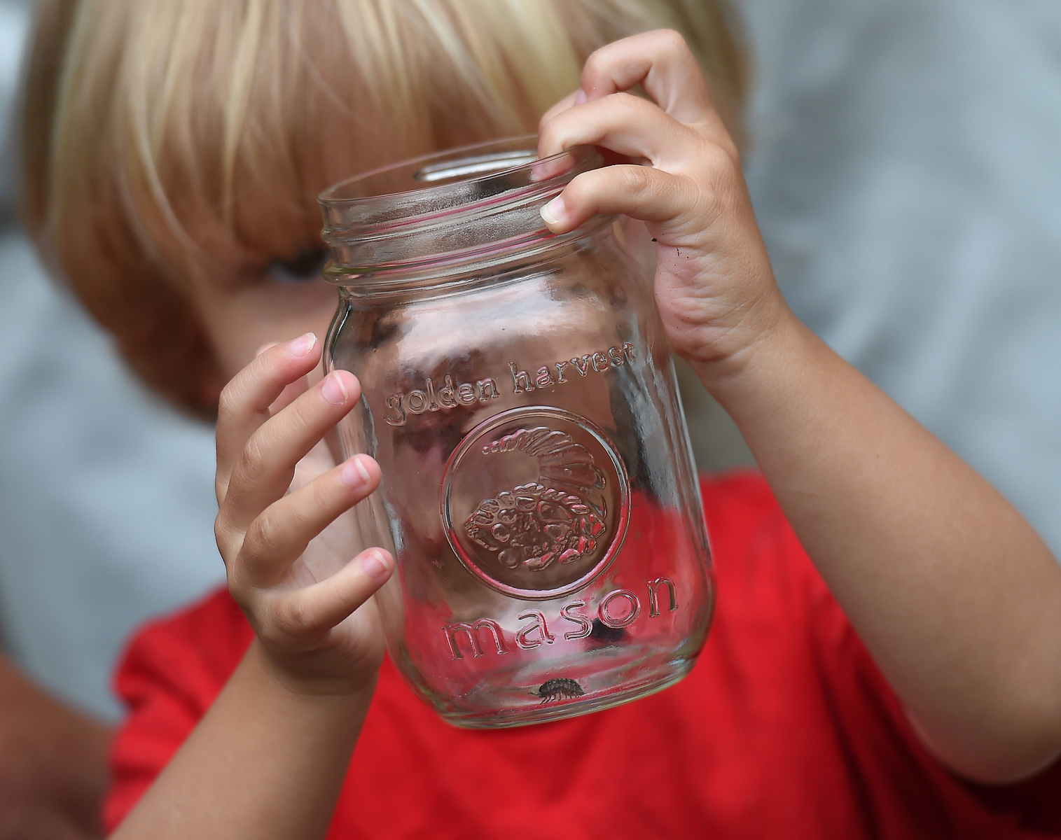 Clifton Decker, 2, examines rolly pollies collected while playing near the front porch of his grandparents home in Lost Rabbit.